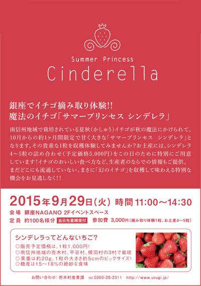 サマープリンセス-シンデレラ-銀座NAGANOイベント